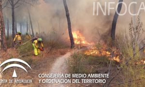 incendio-en-cartaya