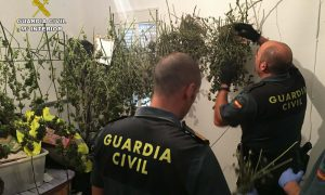 guardia-civil-marihuana-ok